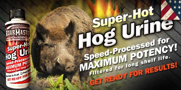 Hog Scents   Nelson's Guide To A Complete Hog Hunting Gear