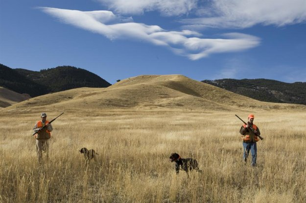 Check In And Out | Deer Hunting Safety Tips For The Uninformed Novice
